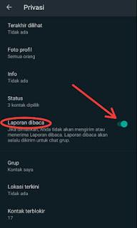 cara-mudah-mematikan-centang-biru-whatsapp-6