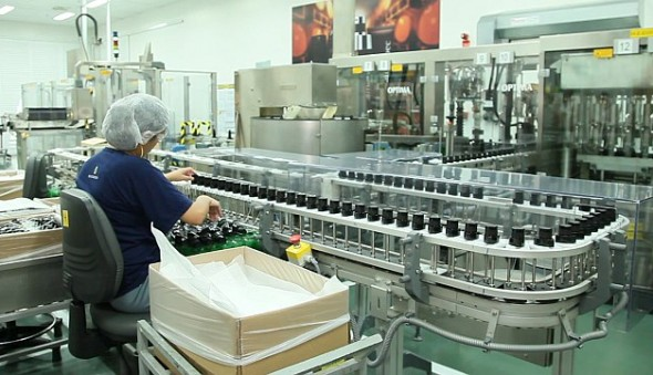 auxiliar producao araucaria