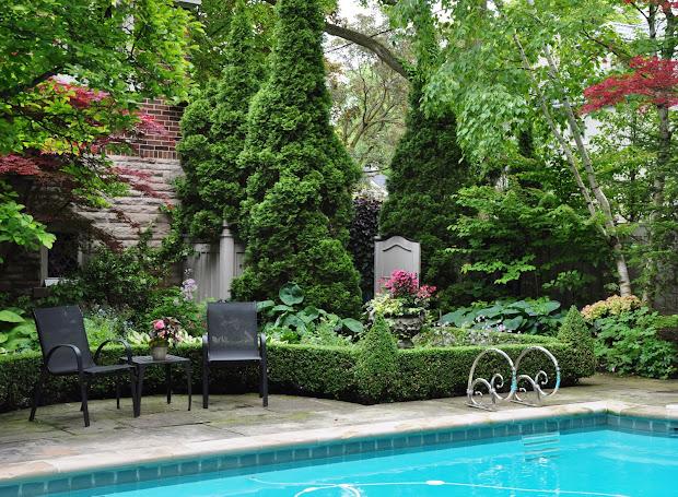 Garden around Swimming Pool