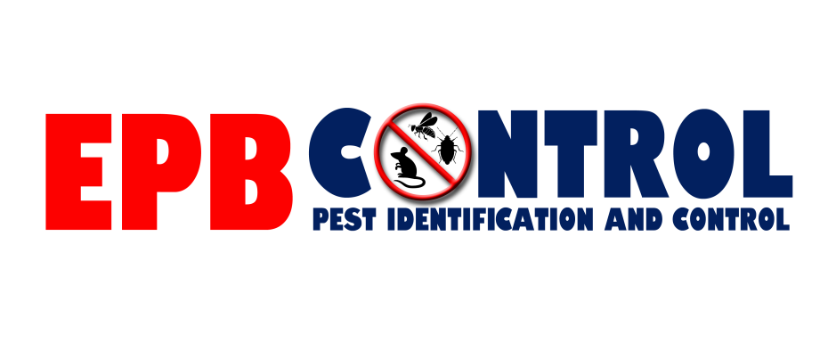 Bed Bug Control London | Bedbugs Extermination London