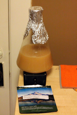 Stir-plate starter of WY1056, right after pitching the Wyeast smack-pack.