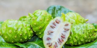Virus Corona Keok dari Jus Mengkudu