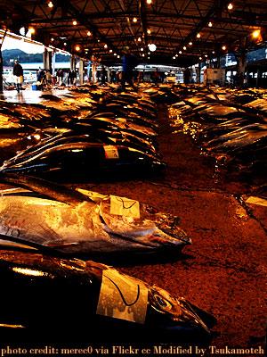 熊野・勝浦200712