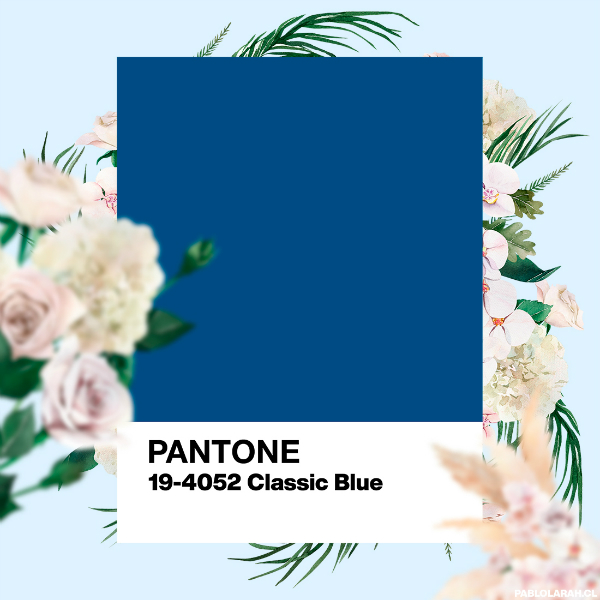 https://blog.pablolarah.cl/2019/12/color-of-year-2020-pantone-19-4052.html