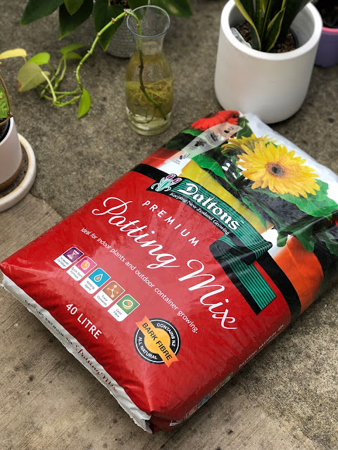 best potting mix for indoor plants