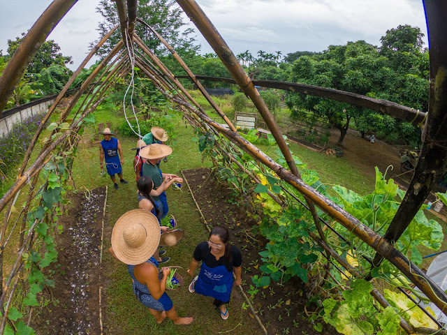 Thai Secret Cooking Class and Organic Garden Farm. August 30-2019