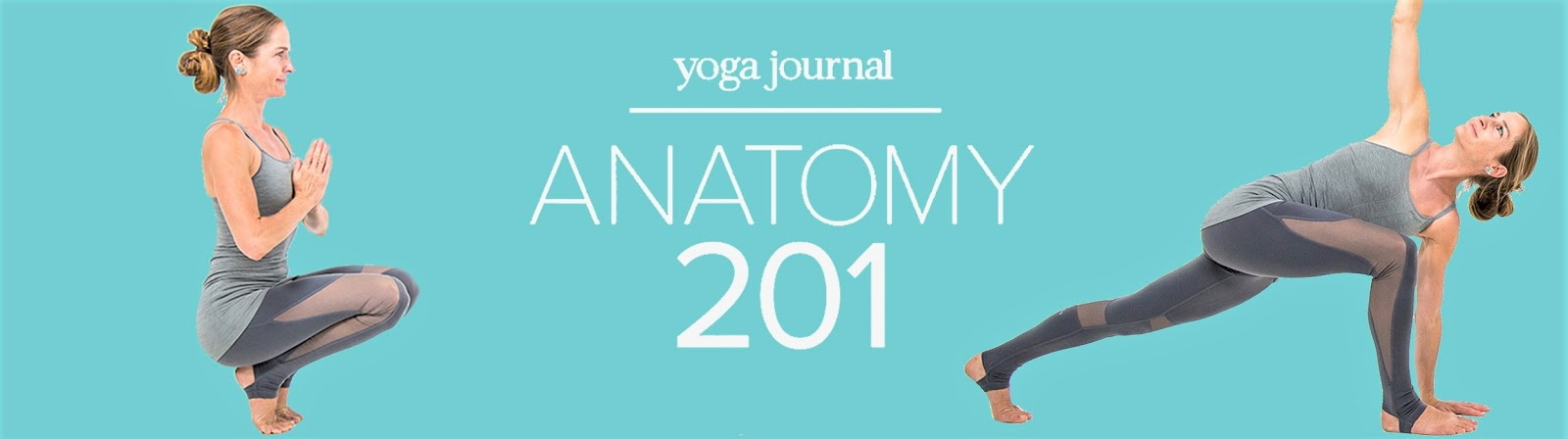 Art Of Motion Circle Of Friends Yoga Journal Anatomy 201 Online