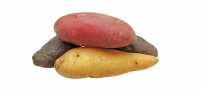 ما هي نوع البطاطا المفيدة لمريض السكري؟