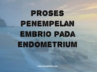 Proses Penempelan Embrio pada Endometrium