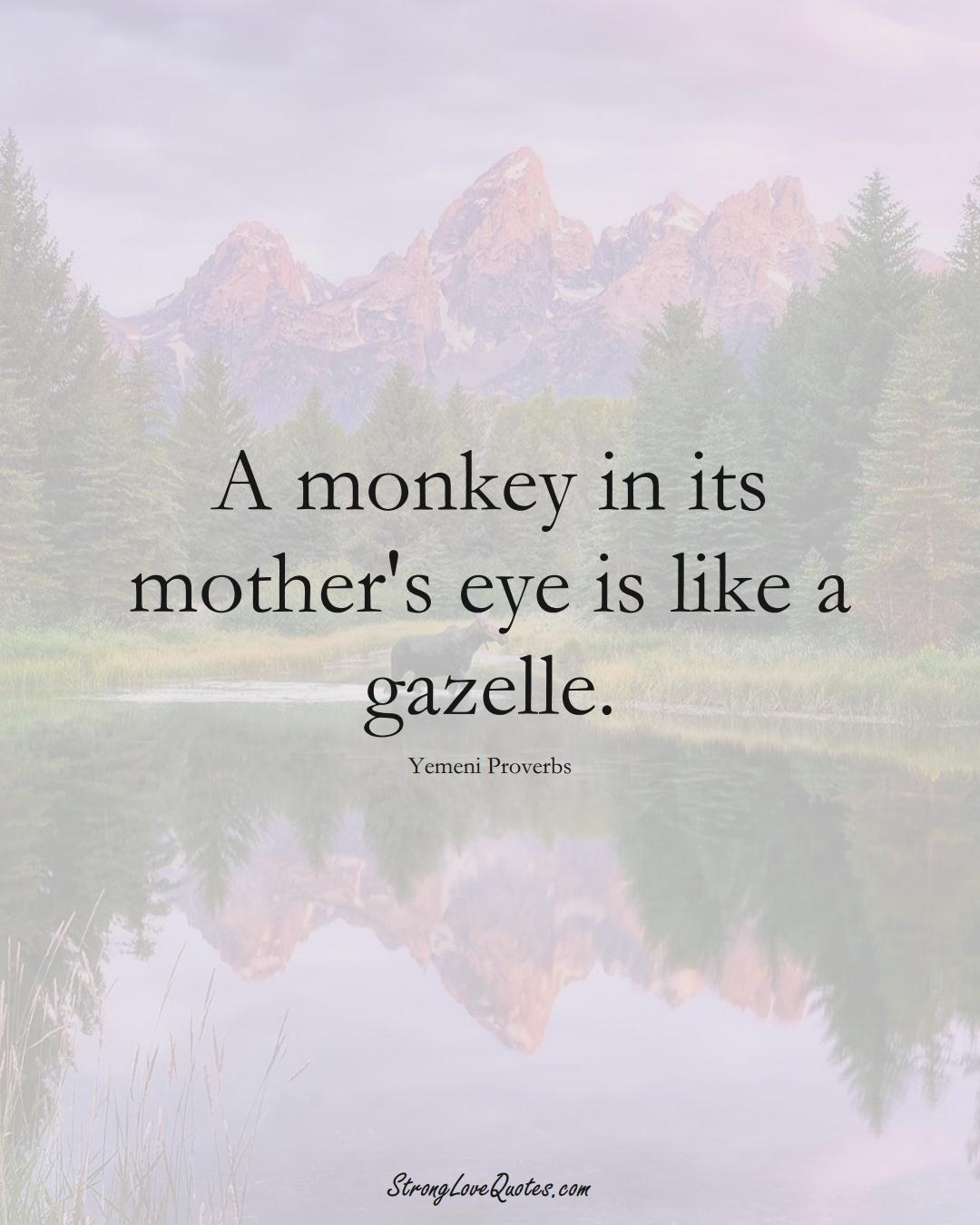 A monkey in its mother's eye is like a gazelle. (Yemeni Sayings);  #MiddleEasternSayings