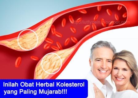 Artikel sederhana yang bertema kesehatan kali ini berjudul  Obat Kolesterol Herbal Yang Paling Ampuh dan Mujarab