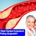 Obat Kolesterol Herbal Yang Paling Ampuh dan Mujarab