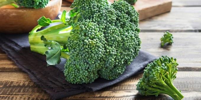 Brokoli, Kaya Nutrisi yang Baik Untuk Otak dan Menghalau Kanker