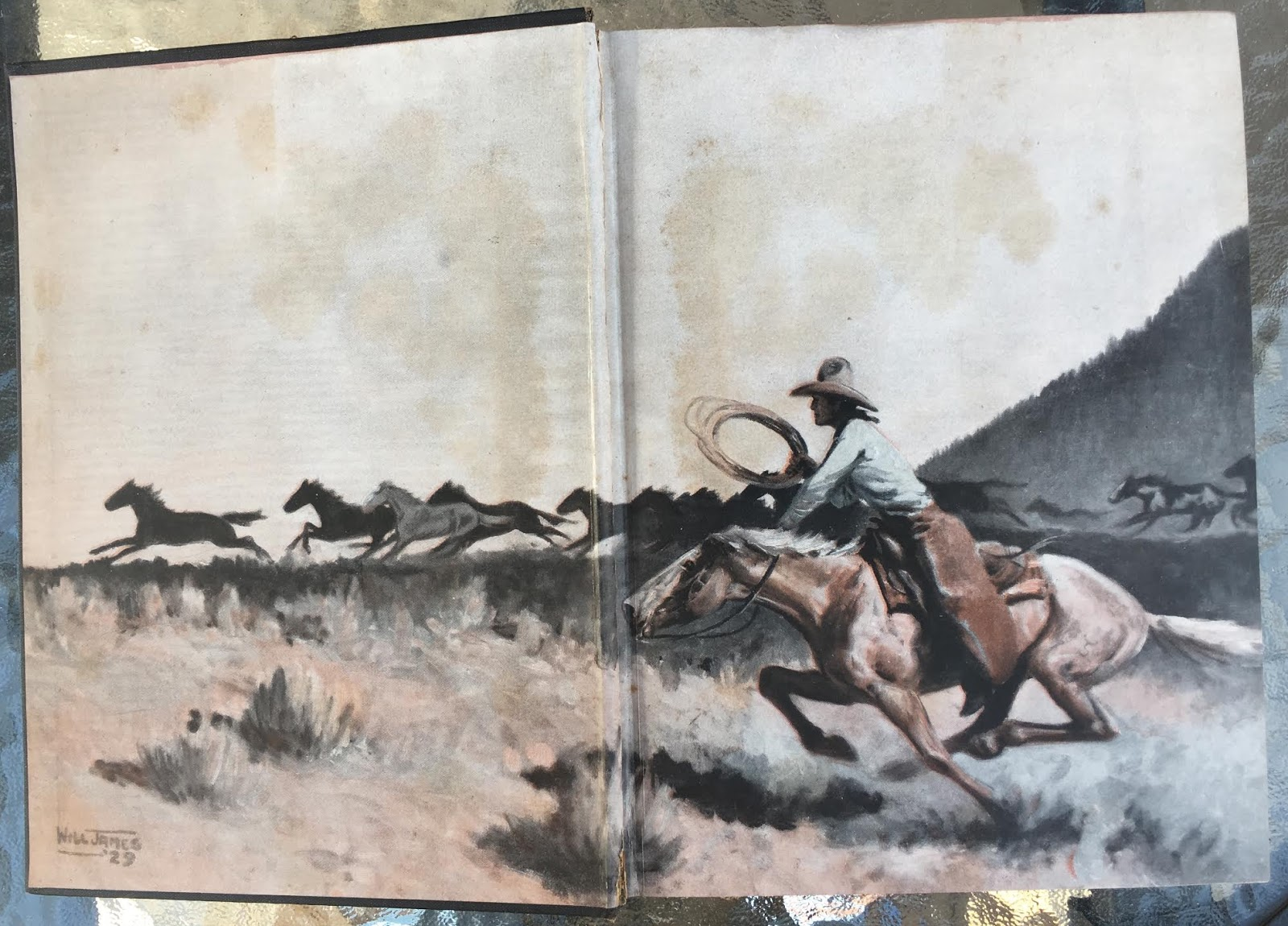 Book Chase: Smoky the Cow Horse (Scribner's Illustrated