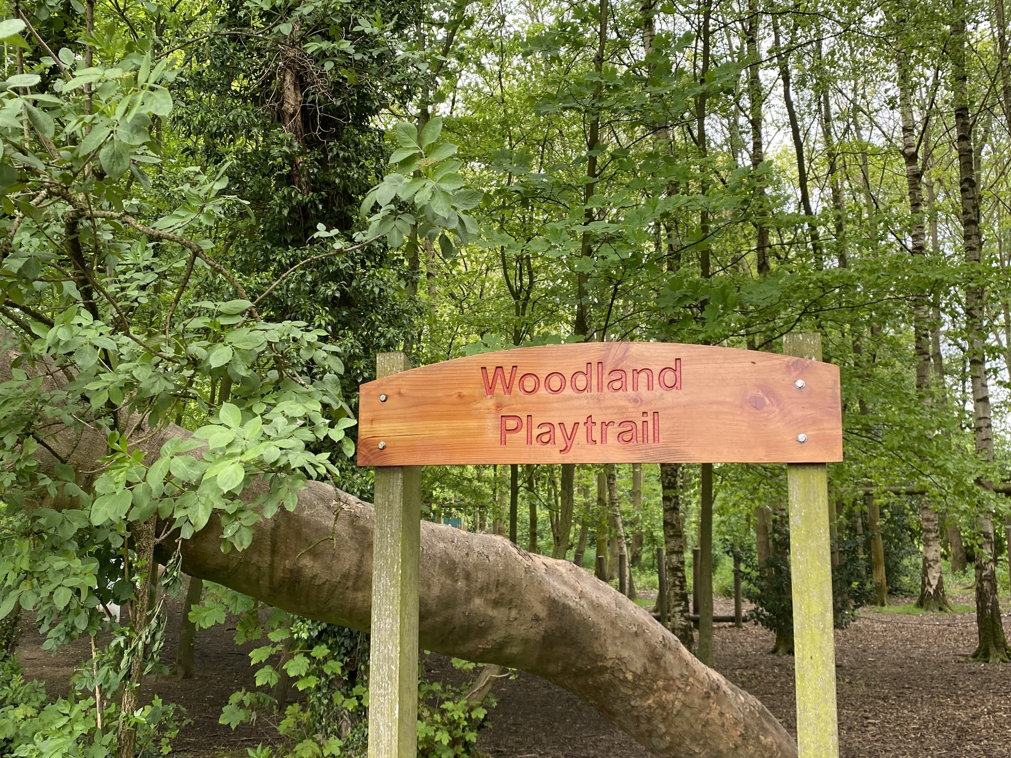 Tatton Park Woodland Playground