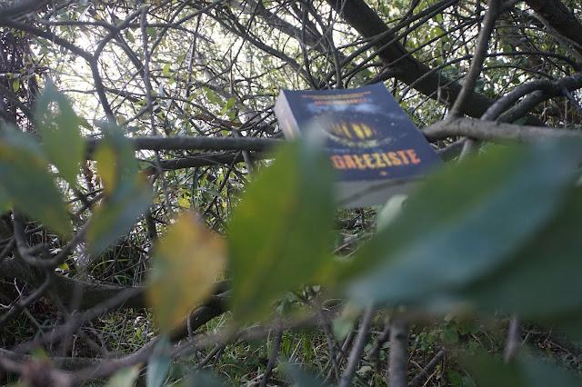 Sprzątanie w zielonym królestwie z Arturem Urbanowiczem + rozwiązanie konkursu
