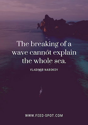 The breaking of a wave cannot explain the whole sea. __ Vladimir Nabokov