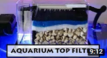 How to Setup Filter Media in Aquarium