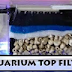 Aquarium Filtration For Clean Water