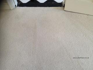 carpet cleaning Cambridge art of clean