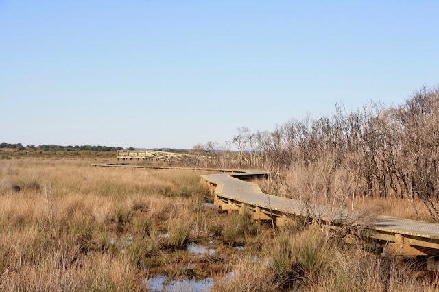Warringine Wetlands, Hastings wooden boardwalk