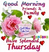 854+ latest unique Good Morning Thursday HD Pictures, Photos, Images, and Pics