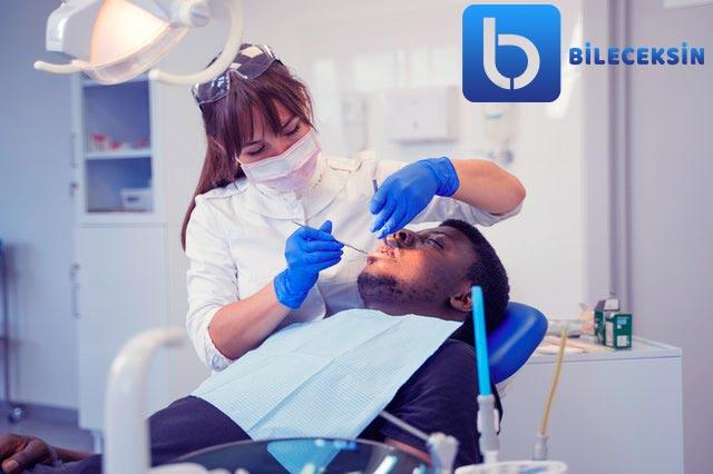 Diş Hekimliği Bölümü: Nedir?, Eğitimi, Dersleri, İş Olanakları ve Maaşı