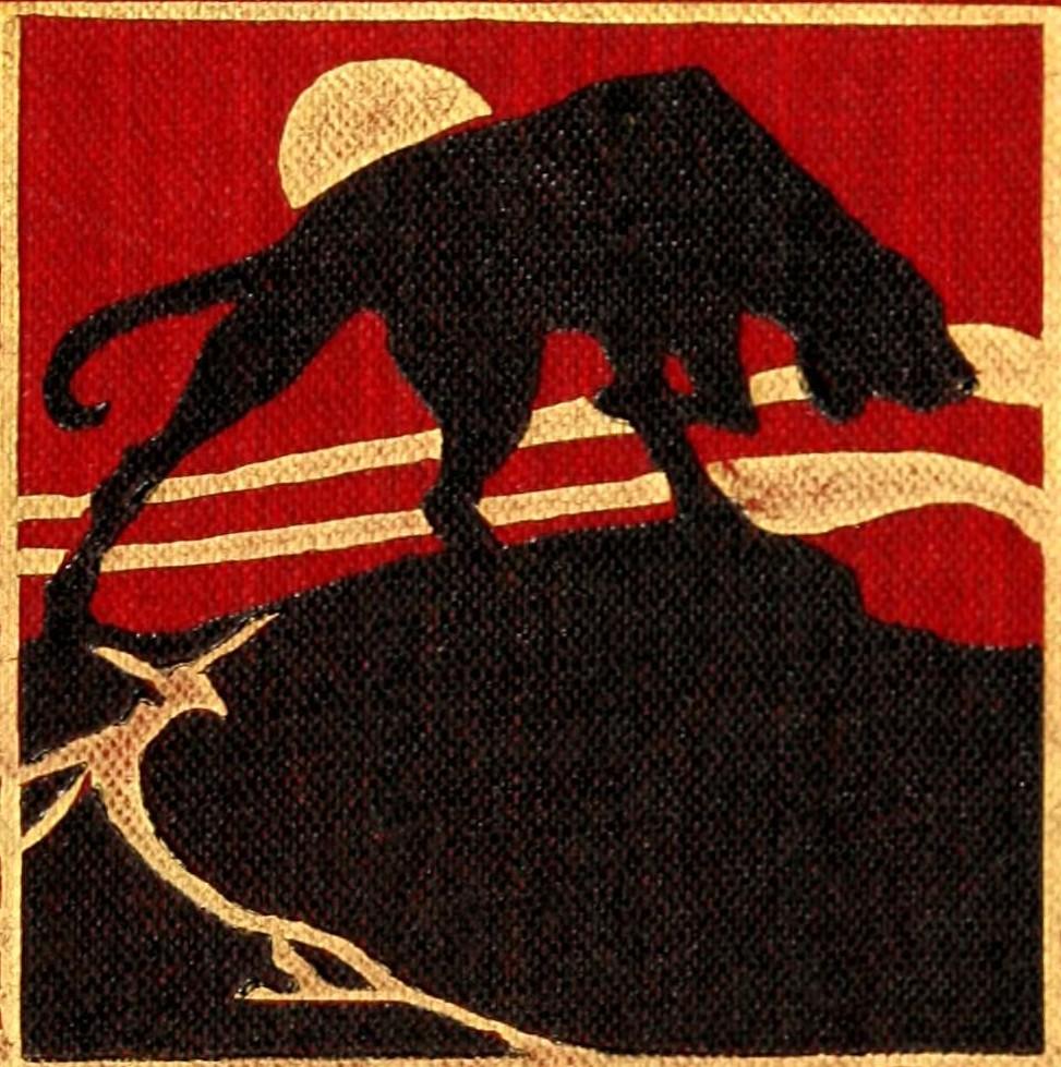 Shukernature Sealskeletondiagram Ferret Skeleton Monk Seal The Black Dog An Aloof Anomaly In Canine Guise Public Domain