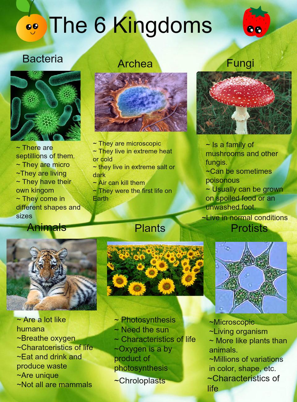 Six Kingdoms of Life - Medical Yukti