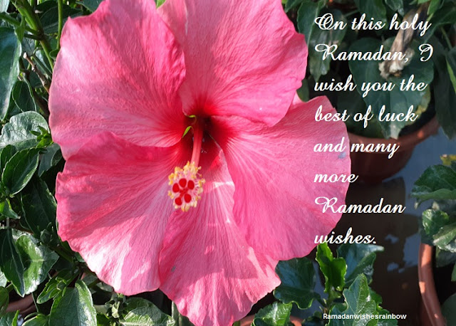 Ramadan best greeting 6