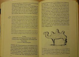 Ein dreihöckriges Kamel - Zeichnung im Buch