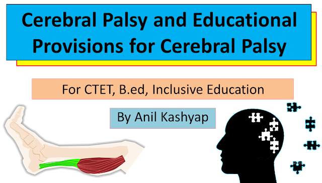 Cerebral Palsy and Educational Provisions for Cerebral Palsy, www.educationphile.com