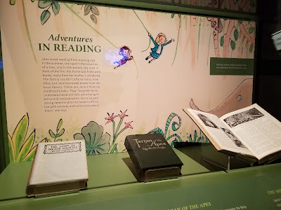 Cartoons in National Geographic s Jane Goodall exhibit