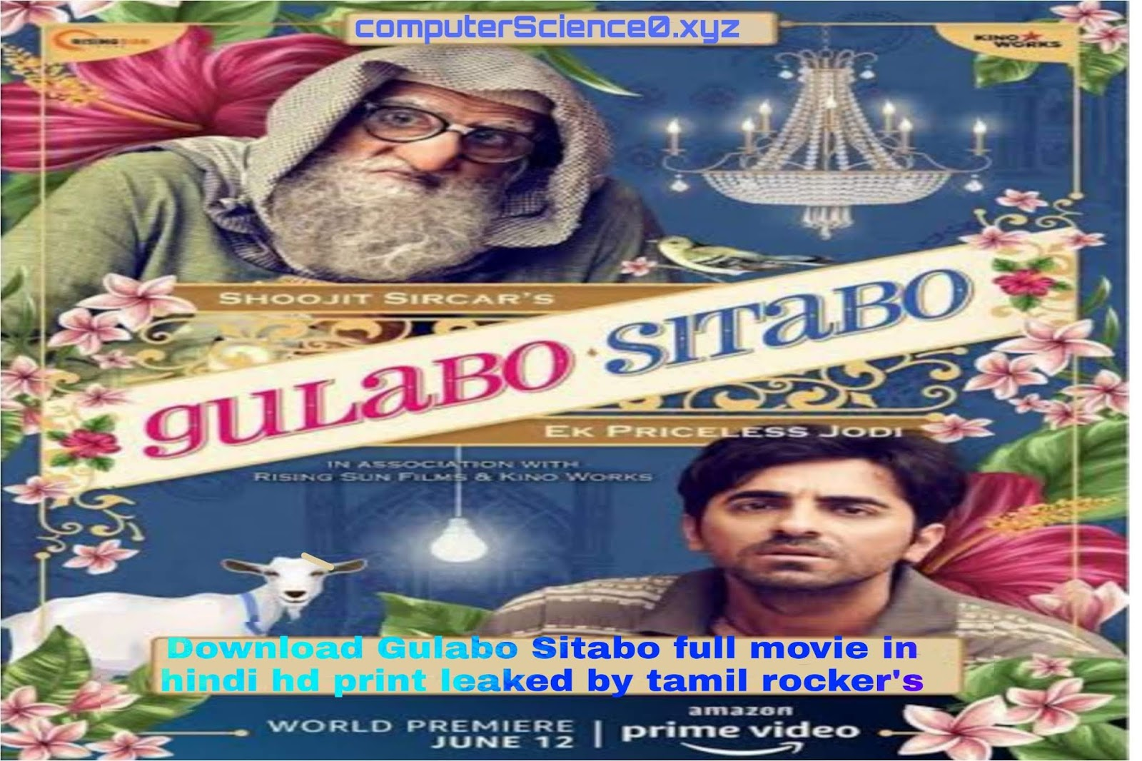 Download Gulabo Sitabo full movie in hindi hd print leaked by tamil rocker's before release date