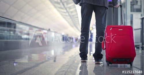 Best Brand For Trolley Bags