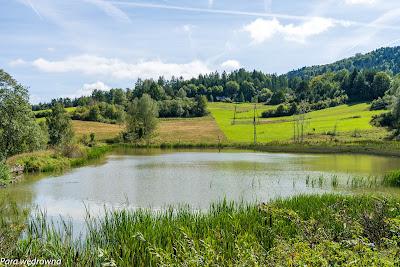 Między Ropkami a Hańczową: zalew na potoku Ropka