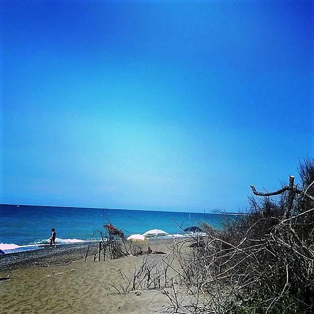 Dune - Macchia mediterranea