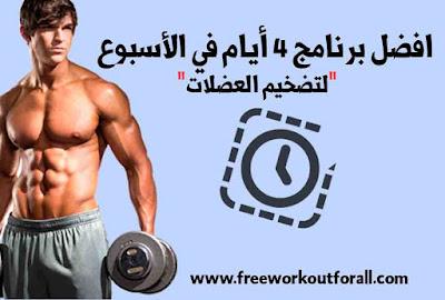 افضل جدول تمارين لتضخيم العضلات