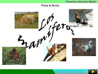 https://cplosangeles.educarex.es/web/edilim/curso_3/cmedio/animales_vertebrados_3/mamiferos/mamiferos.html