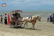 Sempat Ditutup Akibat Balapan Truk, Pantai Cemara Kembali Dibuka