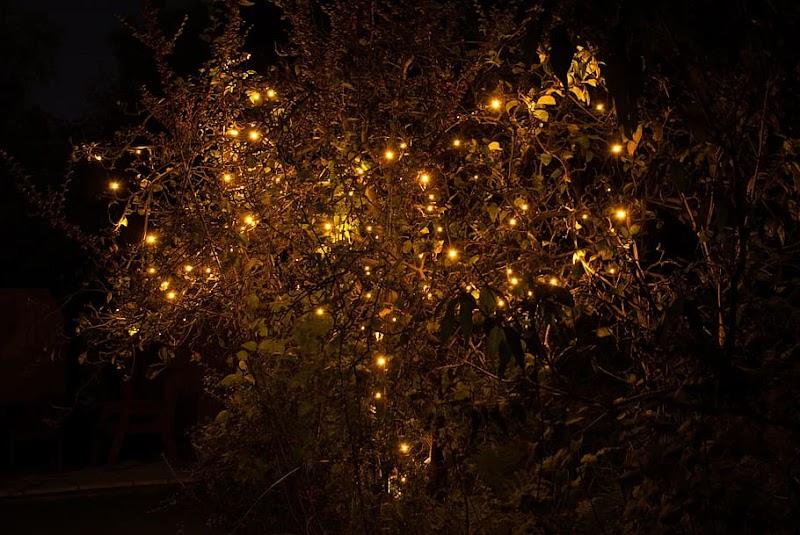 दिवाली की पूजा का शुभ मुहूर्त | Diwali Pujan Ka Shubh Mahurat |