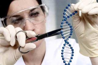 Human gene research