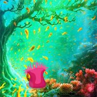 BigEscapeGames Underwater Moorish Idol Escape