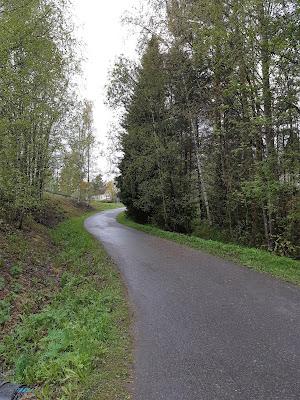 Puiden reunustama asfalttitie, mutkainen ylämäki
