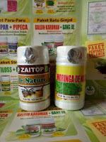 OBAT HERBAL MAAG ASAM LAMBUNG KRONIS DENATURE