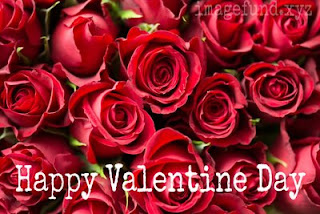 Happy Valentine Day Images, HD Wallpaper and Photos For Lover In 2020