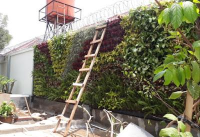 Jasa Pembuatan Vertikal Garden di Bogor - Tukang Rumput Bogor