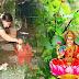 तुलसी का पौधा घर में लगाने से पहले इन बातों पर जरूर दें ध्यान, भगवान विष्णु और मां लक्ष्मी बरसाएंगी कृपा
