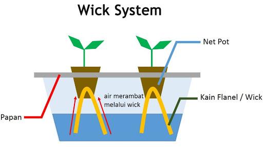 sistem wick hidroponik