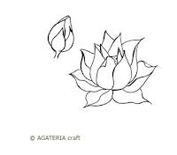 https://sklep.agateria.pl/en/new-products/1533-lotos-zestaw-2-5902557834129.html
